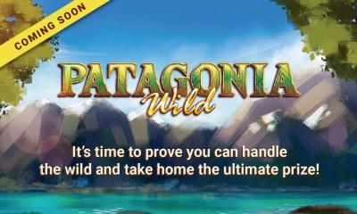 Vibra Gaming Launches Patagonia Wild