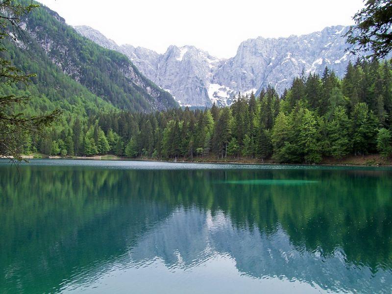 Publication de l'évaluation de l'état de conservation de la nature en Europe