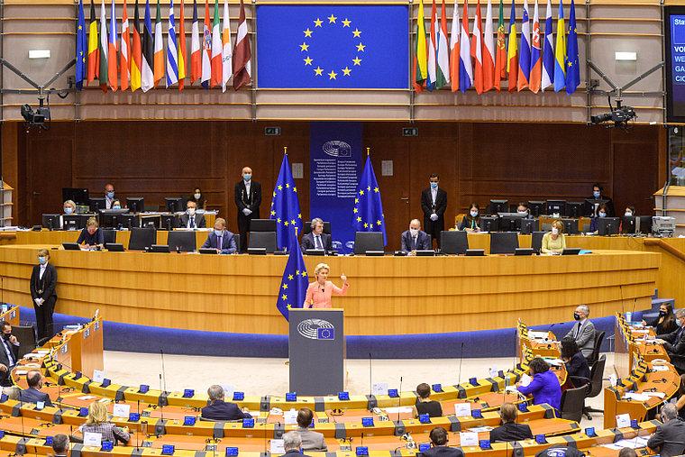 Année 2020 pour l'UE : La Covid-19 oui, mais quoi d'autre ?