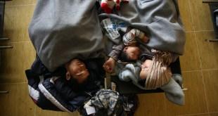 utecenecka kriza, migranti