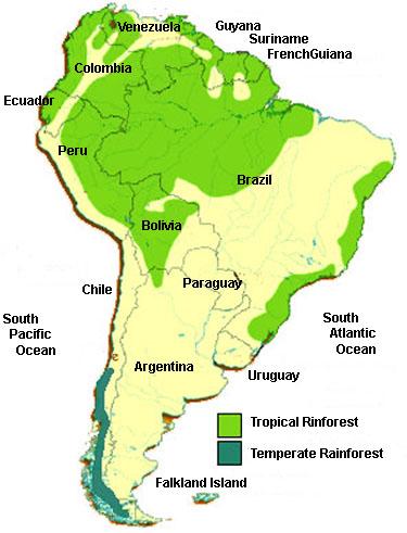 Amazon Rainforest World Map : amazon, rainforest, world, Rainforest, South, America,, Amazon, Rainforest,