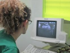 Imagenología Veterinaria