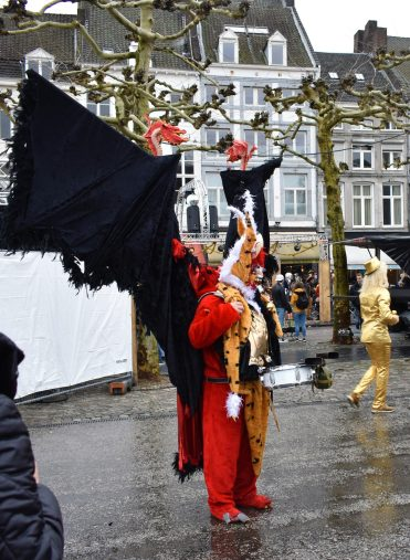 Fantastic costumes of the Maastricht Carnival (31)