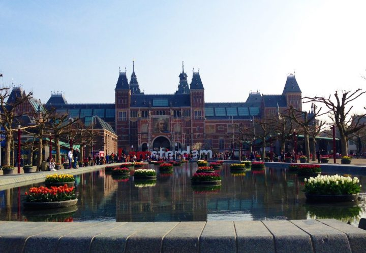 Rijksmuseum in Amsterdam with tulips in bloom for Amsterdam Tulip Festival