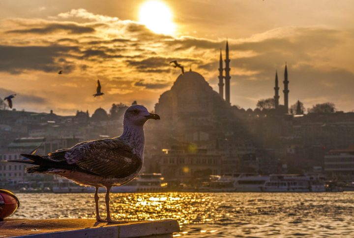 Splendid view from the boat at the Bosphorus Strait at Hagia Sophia