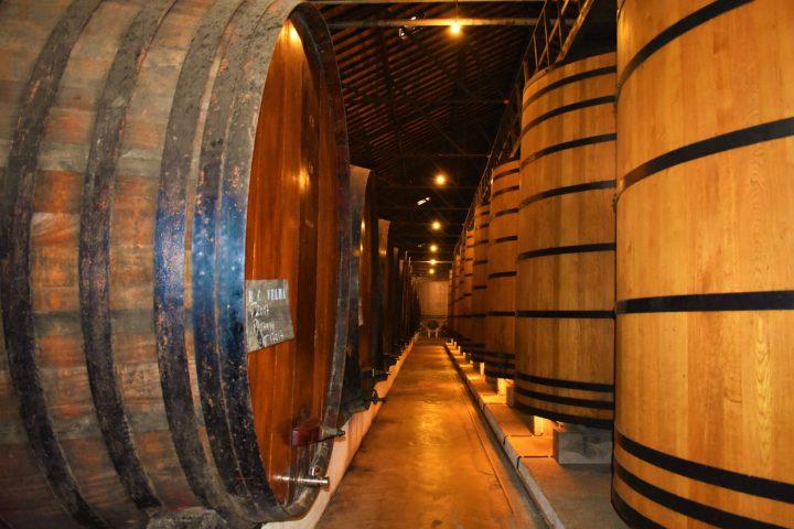 Where are the best port wine cellars in Porto, Portugal