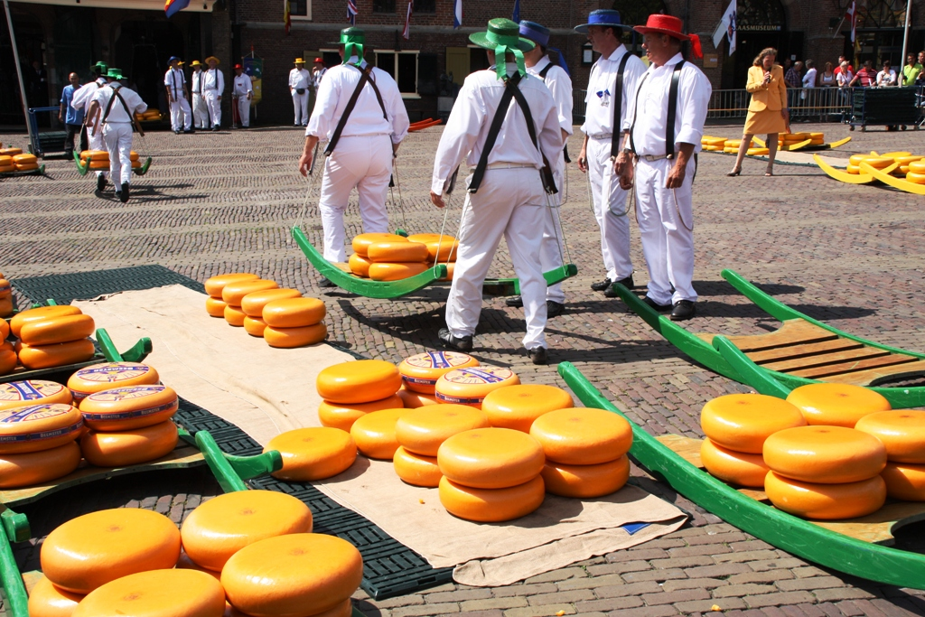 Traditional cheese market in Alkmaar, the Netherlands