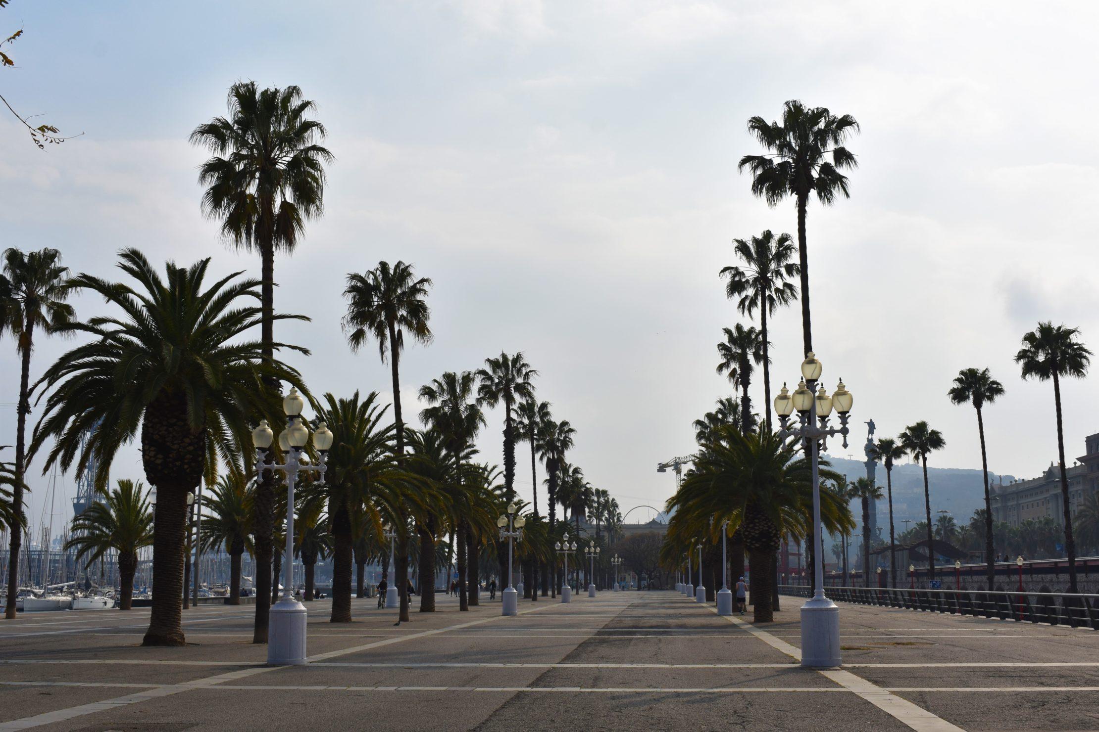 Barcelona antes de la cuarentena