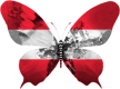 Autriche-papillon
