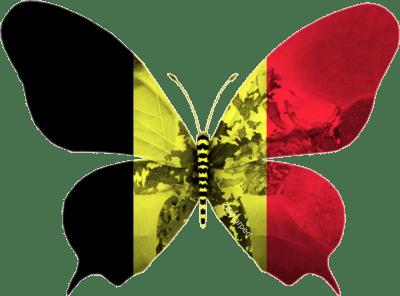 """Belgique 2013 : """"La voix"""" à Malmö"""
