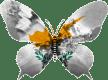 Chypre-papillon
