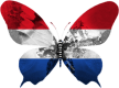 Pays-Bas-papillon