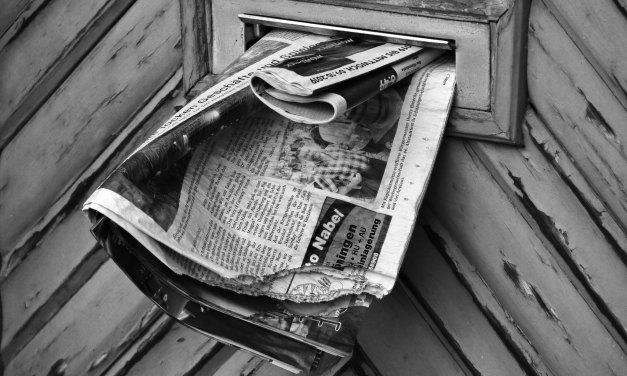 Le petit journal de la semaine #8