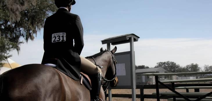 Dressage Horse Strength