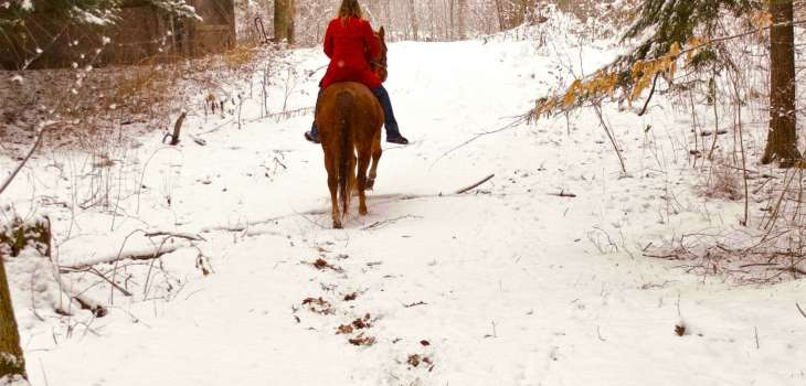 improve your winter riding