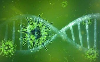 The novel coronavirus is mutating – Should we be worried?