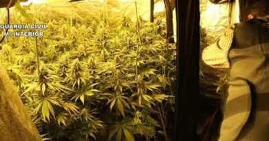 13 detenidos en Bizkaia en una operación contra el tráfico de speed y marihuana,