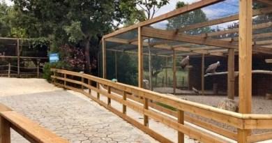 Sendaviva abrirá el 4 de julio con más animales, nuevos recintos y sorprendentes actividades para disfrutar en familia,