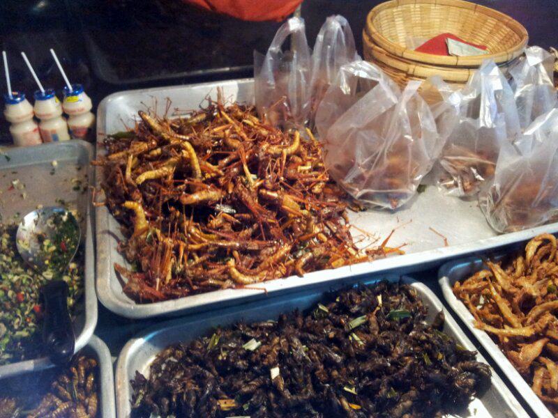Por que comer grilos fritos e outras esquisitices em viagens