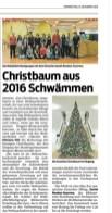 VN-Heimat Bregenz 15.12.16 Christbaum