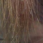 トラブル毛に縮毛矯正とデジパをかける