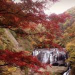 そうだ!紅葉を見に行こう!〜袋田の滝でハートを探せ〜
