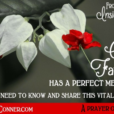 Daily Prayer – A Perfect Memory – It's Okay to Forget!
