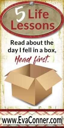 Read about the day I fell in a box, head first.