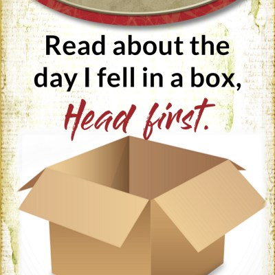 The Day I Fell in a Box – Head First