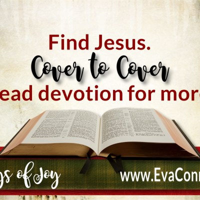 31 Days of Joy ~ Day 12 Seek Jesus Cover to Cover