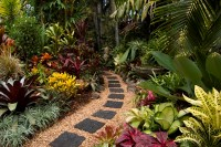gardens-tropical-plants-picture-ideas