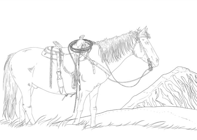 Free Colouring Page Western Horse Eva Hussain Fine Art