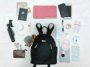 Travel Essentials Checklist: Work Carry-on