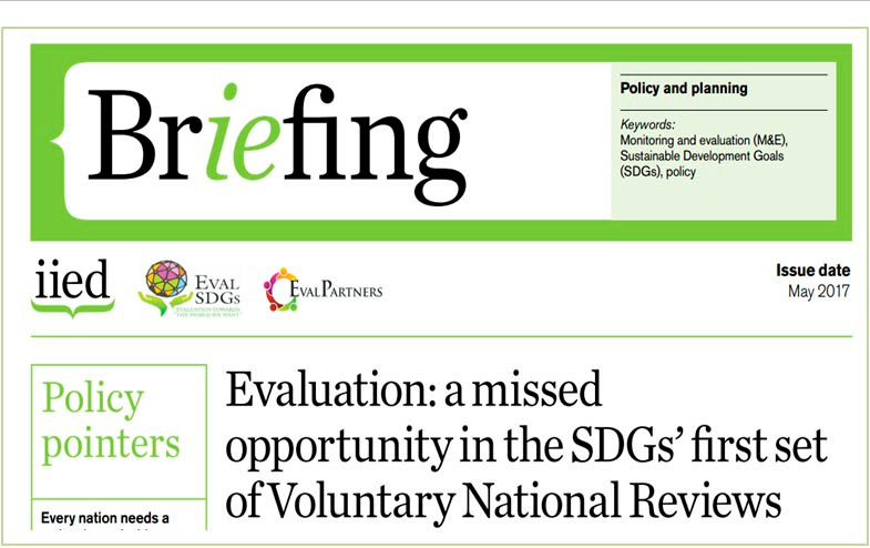 Briefing Paper 6 – Evaluation: a missed opportunity in the SDGs' first set of Voluntary National Reviews