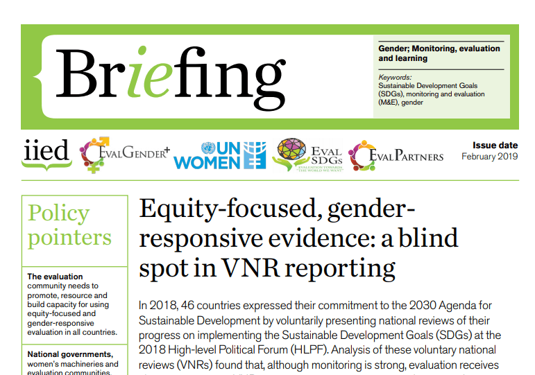 Briefing Paper 10 – Equity-focused, gender-responsive evidence: a blind spot in VNR reporting