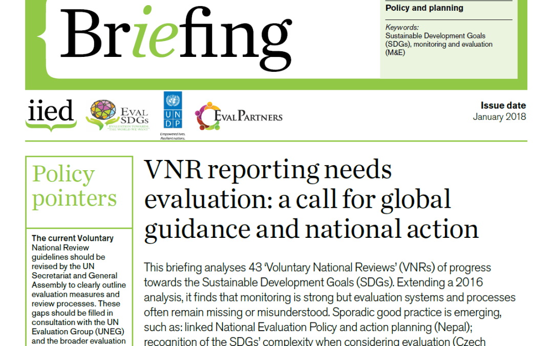 Briefing Paper 8 – VNR reporting needs evaluation: a call for global guidance and national action