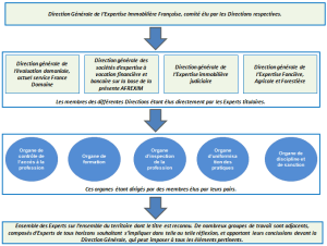 expertise-evaluation-fonciere-immobilier-comptable