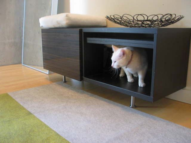 DIY Cat Box Cabinet- evanandkatelyn.com & DIY Cat Box Cabinet u2013 Evan u0026 Katelyn Aboutintivar.Com