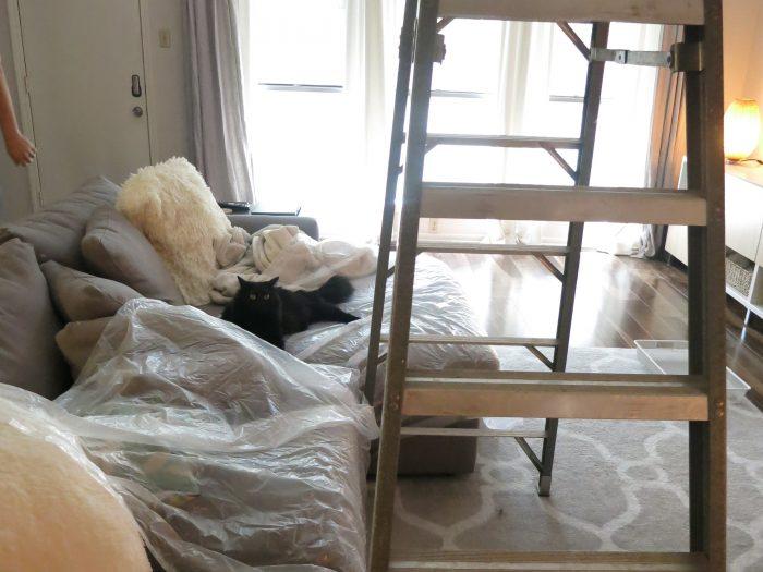 Living Room Fan Swap - evanandkatelyn.com