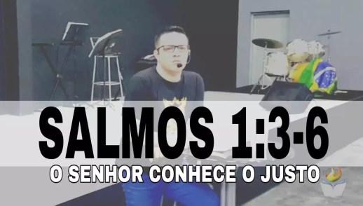 SALMOS 1:3-6 - O SENHOR CONHECE O JUSTO QUE ANDA FIRMADO NAS ÁGUAS