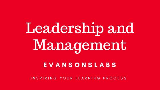 The Bridge between Leadership and Management