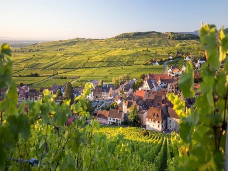 Paysage  d'Alsace / chauffeur VTC / Evasion Cars