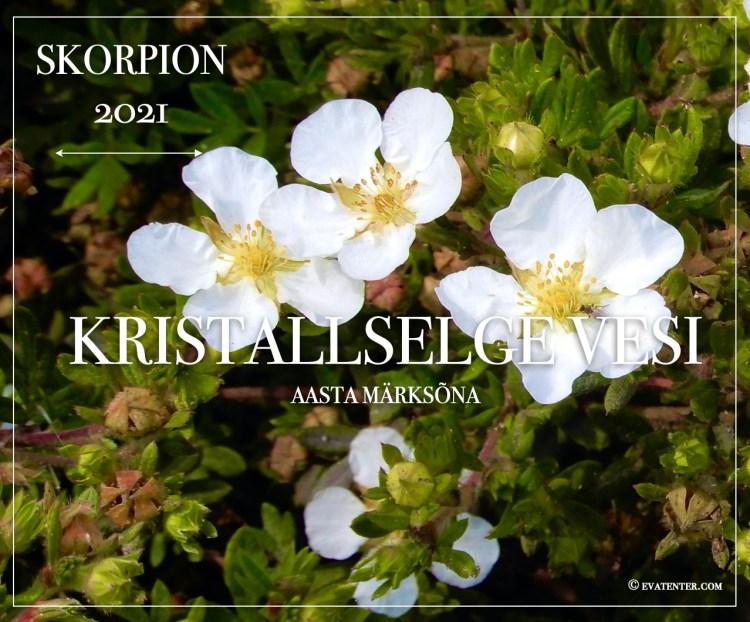 skorpion 2021 horoskoop