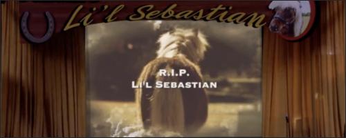 lil sebastian