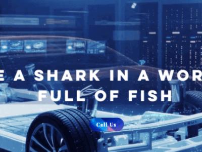Skill Shark EduTech- India