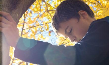 Découvrez l'énergie de l'arbre à travers la méditation