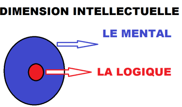 dimensionintellectuel