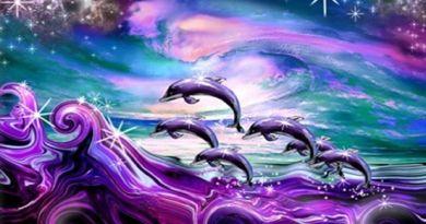 Pleine Impression de Magnificence par les Licornes et les Dauphins Célestes (Méditation pour recevoir la magnificence du Créateur)