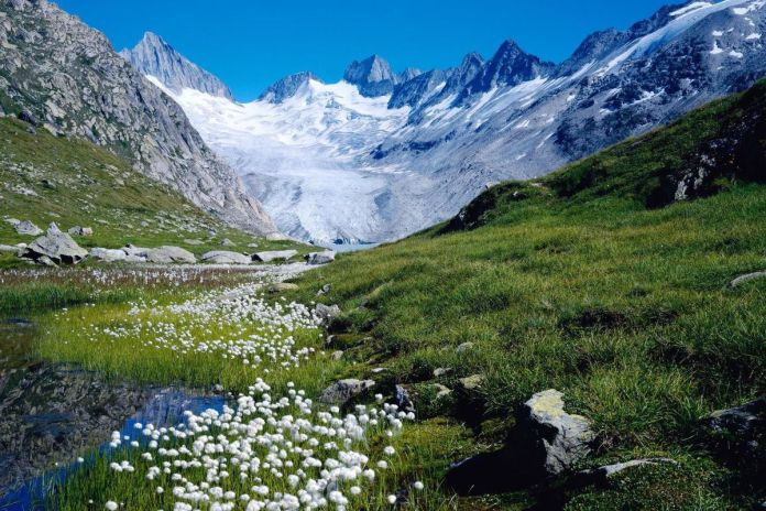 montagne-glacier