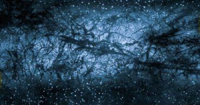 Conscience et mécanique quantique : Rien ne serait solide « Tout serait énergie »